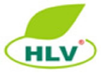 hailuavang-logo
