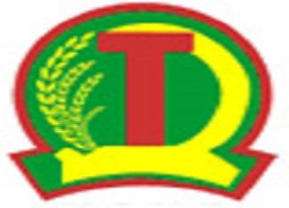 namsonghau-logo